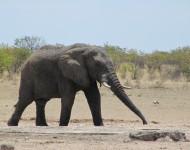 Namibie 2012-2753