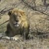 Namibie 2012-3222